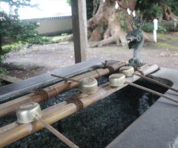 諏訪神社 手水の龍