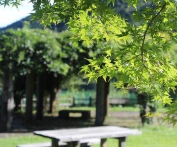 おしどりの池広場