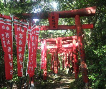 猿場稲荷神社 千本鳥居