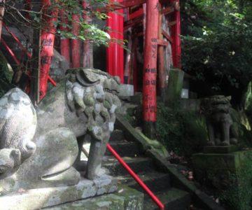 猿場稲荷神社 狛犬