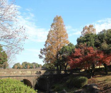 百花台公園 石橋