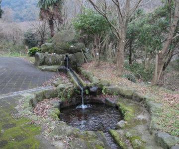 南千本木の湧水