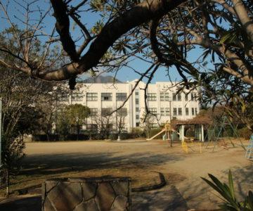 白山公園 第三小学校