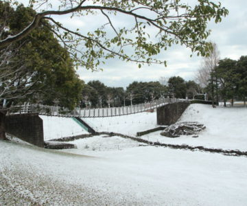 百花台公園 吊り橋