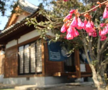 水原神社 拝殿