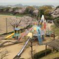 ロケット公園 桜