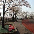 島原市営球場 桜