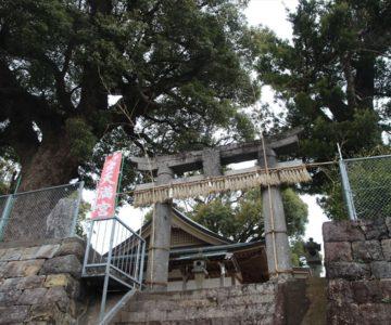三会温泉神社 鳥居