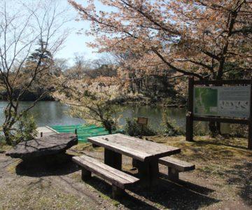 白雲の池 ボート乗り場
