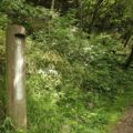 普賢岳 登山道 6合目(標高1090m)の標識