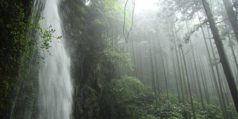 岩戸神社 滝