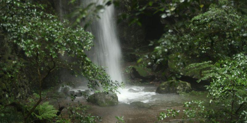 岩戸神社 滝壺