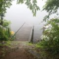 白雲の池 鴨