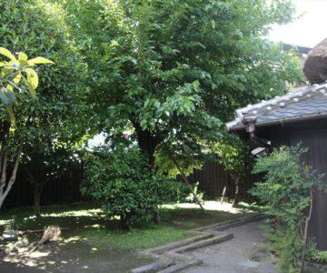 島原市武家屋敷 篠塚邸