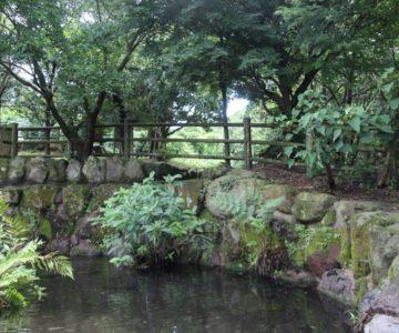 千本木湧水 防火貯水池