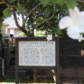 護国寺 三十番神