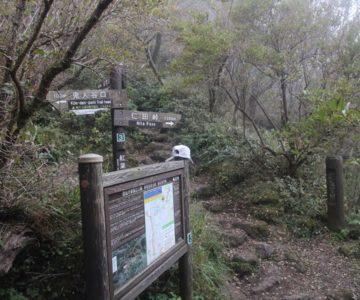 普賢岳登山 紅葉茶屋
