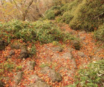 普賢岳登山 紅葉