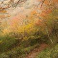 普賢岳登山
