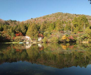 白雲の池 紅葉
