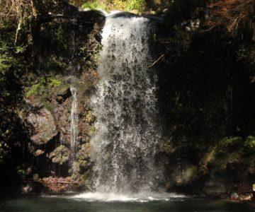 鮎帰りの滝 滝つぼ