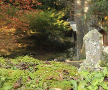 鳥兎神社 海龍の石碑