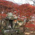 橘神社 石祠