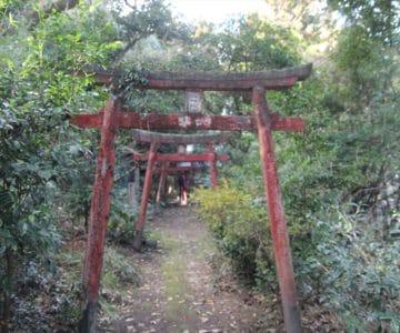 平田神社 千本鳥居