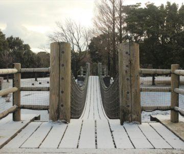 百花台公園 ターザンの森つり橋