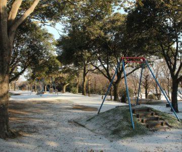 百花台公園 ターザンの森