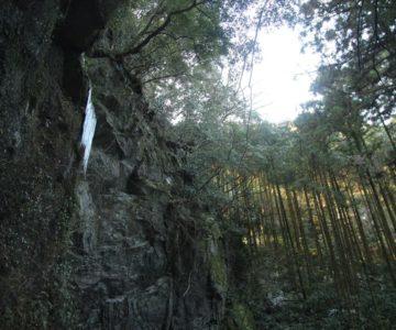 岩戸神社 西郷川