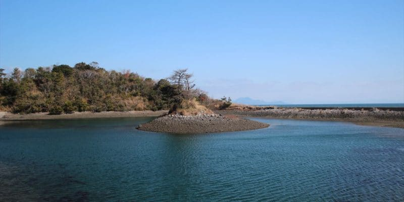 秩父ヶ浦公園 流れ島