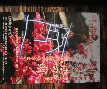 緋寒桜の郷