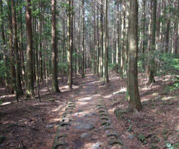 高岩神社 参道