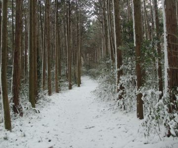 焼山園地 展望広場 雪化粧