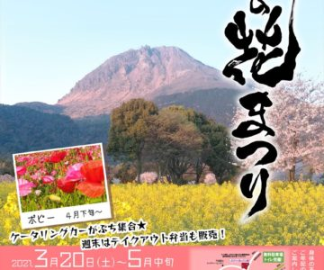 火張山花公園 春の花まつり