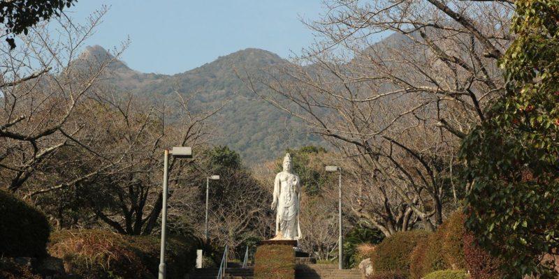 島原総合運動公園 桜 3/11