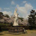 眉山治山祈念公苑 桜 3/22