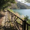 別所ダム 鴛鴦の池
