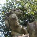 諏訪神社 狛犬