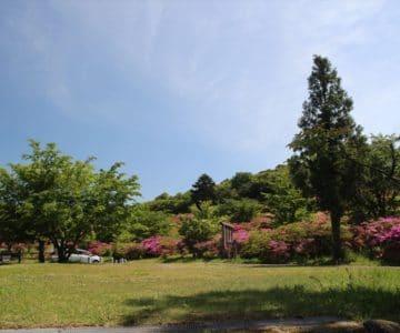 雲仙宝原つつじ公園