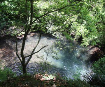 鮎帰りの滝 滝壺