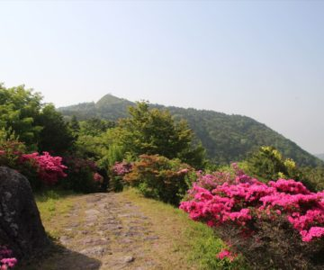 仁田峠 野岳