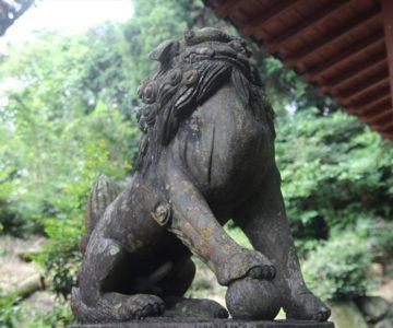 大塚神社 狛犬