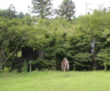 烏兎神社 鳥兎の館