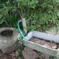 琴平神社 手水鉢