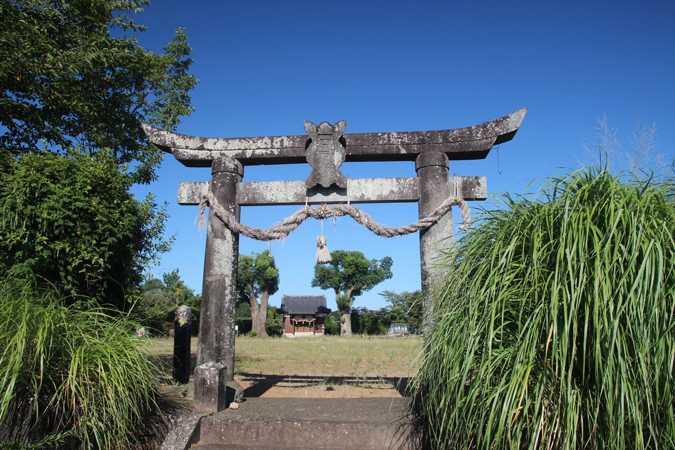 山ノ上神社 鳥居