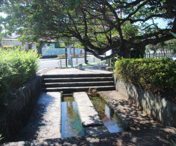 白土湖緑道公園 洗い場