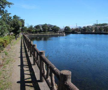 白土湖緑道公園