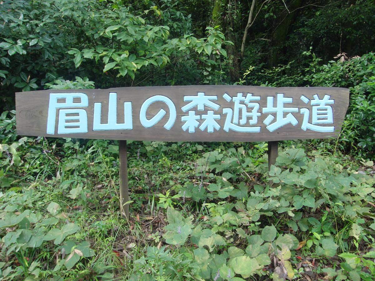 眉山の森 遊歩道